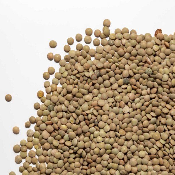 Lenticchie bio in umido confezione 2
